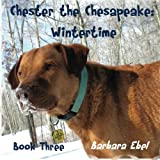 Chester the Chesapeake: Wintertime (The Chester the Chesapeake Series) by Barbara Ebel MD (2010-03-09)