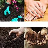 ariel-gxr Garden Genie Gartenhandschuhe, Wasserdichte Garten Handschuhe, Langlebig stichsichere Safe Gartenarbeit Handschuhe und Garten Werkzeug Handschuhe mit Klauen Zum Graben & Bepflanzen Vergleich