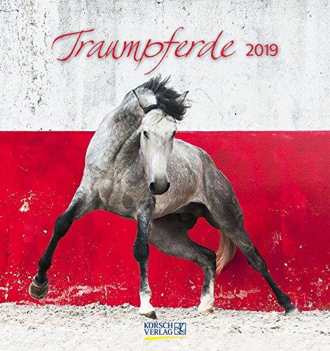 Traumpferde 2019: aufstellbarer Postkartenkalender