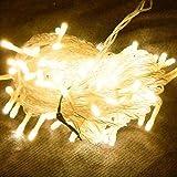 PMS® CATENA LUCI A LED LUMINOSO NATALIZIA 300 LEDs 32M LUCE LUCCIOLE CON CONTROLLER 8 FUNZIONI IDEALE PER NATALE COMPLEANNI FESTE (BIANCO CALDO)