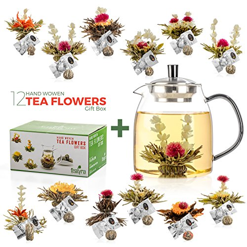 Tealyra - Flowering Tea Gift Set - 900ml Glass Teapot with 12 Variety Flavors of Finest Blooming Green Teas (Teapot + 12 Flowers)