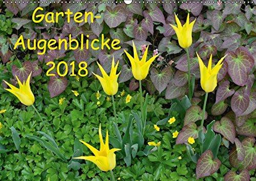 Preisvergleich Produktbild Garten-Augenblicke (Wandkalender 2018 DIN A2 quer): Stimmungsvolle Gartenszenen im Wechsel der Jahreszeiten (Monatskalender, 14 Seiten ) (CALVENDO Natur)