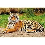 Tigre FOTOMURALE - maestosa tigre quadro murale ideale per il soggiorno - Great Art