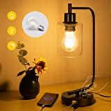 Industrial Table Lamp,Bulb Included Dual USB Port Iron Lantern Glass Shade Style Dimmable Bedside Desk Lamp for Bedroom, Offi