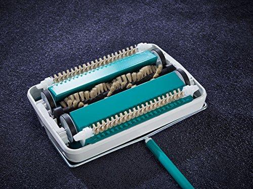 Leifheit Regulus - Escoba para alfombras, Color Turquesa