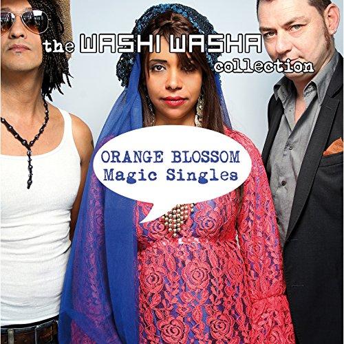 Magic Singles (The Washi Washa Collection)