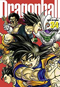Dragon Ball Perfect Edition Tome 34
