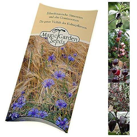Kit de graines: 'Piment fort pourpre et noir', 5 variétés décoratives pour cultiver vos propres piments forts, présenté dans une belle boîte-cadeau