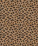 Leopard Print Gold Wallpaper 10m