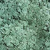 Bodenbeschichtung Farbchips small plates grün1 grob 1kg