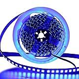LED Strip 5M, XUNATA LED Streifen SMD 5054(Heller als 5050)Blau LED Lichtband IP65 Wasserdicht Selbstklebend LED Bander, Ideal für Garten, Weihnachten, Küche, Party (Blau)