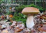 Pilzkalender (Tischkalender 2018 DIN A5 quer): Essbare Pilze aus heimischen Wäldern im Jahresablauf (Monatskalender, 14 Seite