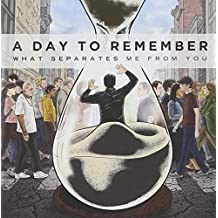 What Separates Me From You by A Day to Remember (2010-11-16)