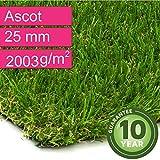 Kunstrasen Rasenteppich Ascot für Garten - Florhöhe 25 mm - Gewicht ca. 2003 g/m² - UV-Garantie 10 Jahre (DIN 53387) - 4,00 m x 8,00 m | Rollrasen | Kunststoffrasen