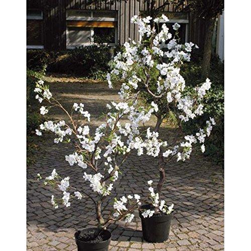 234b183c8289 Artplants - Jardín > Jardinería > Recipientes para plantas y ...