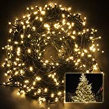 Excelvan Safe low-voltage Output(24V) 328ft 500 Led 100m Led Warm White Green String Indoor Outdoor Waterproof Fairy Lights 8 Modes Lighting for Christmas Xmas Decorations Tree Wedding Garden Patio (328 FT, Warm White)