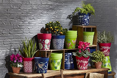 Vasi Per Esterno In Plastica.Vaso Da Fiori Rosa Blu E Verde Vasi Da Fiori Colorati Per Esterni