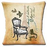 Französischen Shabby Chic Vintage Stuhl Birds Paris Eiffelturm-40,6cm (40cm) Kissenbezug,