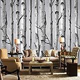 Leegt 3D Tapete Wallpaper Mural Hand Gemalte Weiße Birke Muster Wandbild Tapeten Tapeten Schwarz Weiß Grau Wald Hintergrund Hintergrund Für Das Wohnzimmer 350cmX300cm
