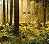 Wald 2018 -