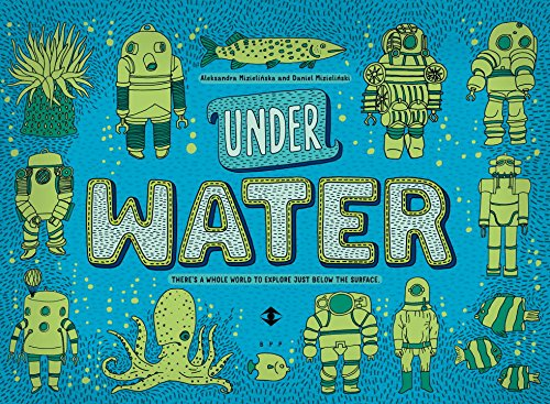 Book's Cover of Under Water Under Earth