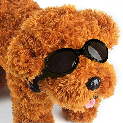 GFEU - Hunde-Sonnenbrille, schicke Brille mit UV-Schutz, wind- und wasserdichter Sonnenschutz, für Hunde und Hundewelpen