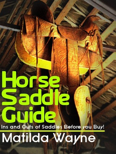 Horse Saddle Guide - Ins and Outs of Saddles Before you Buy! (English Edition) (Horse Bits Tack)