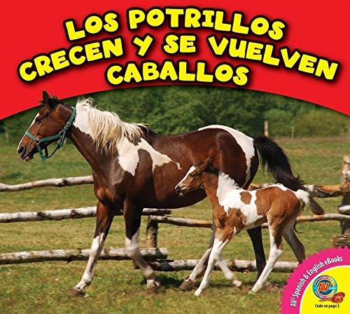 Los Potrillos Crecen y Se Vuelven Caballos (Los animales crecen / Animals grow up) por Cecilia Minden