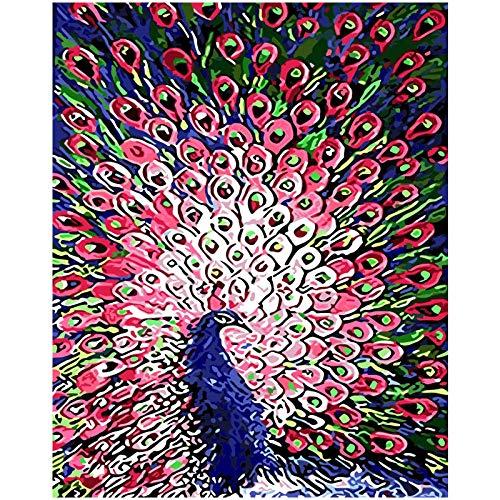 Schöne Vögel Bunte Farben DIY Ölgemälde Durch Zahlen Kits Wandkunst Bild Geschenk Raumdekoration ()