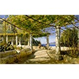 Impresión en madera 50 x 30 cm: Pergola on Capri overlooking the Vesuvius de Peder Mork Mönsted / akg-images