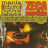 Zeca Pagodinho:Instrumental