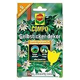 COMPO BIO Gelbsticker dekor, Dekorative Leimfalle, Inklusive Holzstäbe und Aufhänger, Insektizid-frei, Je  10 Stück