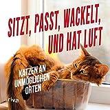 Sitzt, passt, wackelt und hat Luft: Katzen an unmöglichen Orten