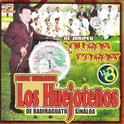 Puros Toros Vol. 3 by Banda Los Huejote??os (2005-08-03)