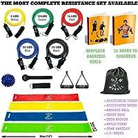 Bande di resistenza, palestra scimmia Premium e tubi di resistenza con sfera di massaggio per fitness, allenamento e crossfit. Free Blueprint Exercise guide