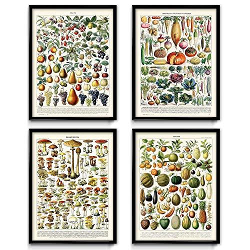 Este colorido y fascinante dibujo tiene preciosas imágenes de fresas, peras, uvas, cerezas, melocotones, manzanas, plumas, y mucho más en una de las impresiones, y squash, radishes, zucchini, péjaros, gabarros y una calabaza en la otra. Perfecto para...