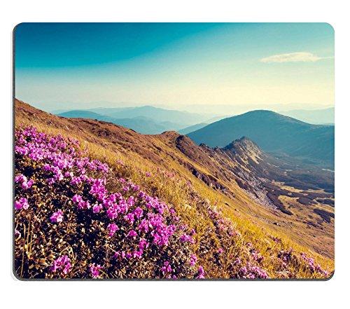liili-mouse-pad-de-goma-natural-alfombrillas-magic-rosa-rododendros-flores-en-verano-montaa-carpathi