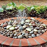 Pebble Fountain Water Feature Kit with Reservoir and Quality Pump