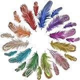 Jerbro JERBRON - 100 Plumes Multicolores - Naturelles Douces et moelleuses - pour Bricolage, Loisirs créatifs…