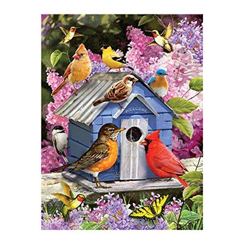 vimbhzlvigour 40x 50cm Paint By Anzahl Kit Vivid Vogel Ölgemälde rahmenlose Modern Home Decor Geschenk, 3#, 40cm x 50cm (Vögel ölgemälde)