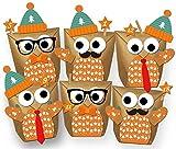 Set 24 Eulen Adventskalender Weihnachten 2017 - Alle Teile vorgestanzt! Geschenktüten Geschenkpapier zum selber Befüllen - DIY zum Basteln ohne Schere - 100% recyclebar!