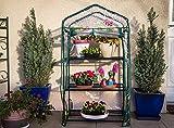 Serre de jardin, balcon, terrasse – Structure acier vert housse PVC transparente imperméable – Mini serre transportable 3 étagères L69*P49*H125 cm – Interouge