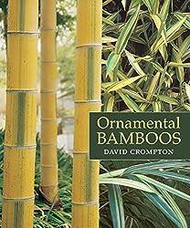Ornamental Bamboos