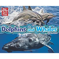 Dolphins and Whales in a Box [With Cards and Poster and 3 Books] by Gina Shaw (26-Aug-2014) Paperback