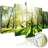 murando Modernes Acrylglasbild 200x100 cm - 5 Teilig - 2 Formate zur Auswahl – Glasbilder – TOP - Wand Bild - Kunstdruck - Wandbild – Bilder c-B-0030-k-n 200x100 cm