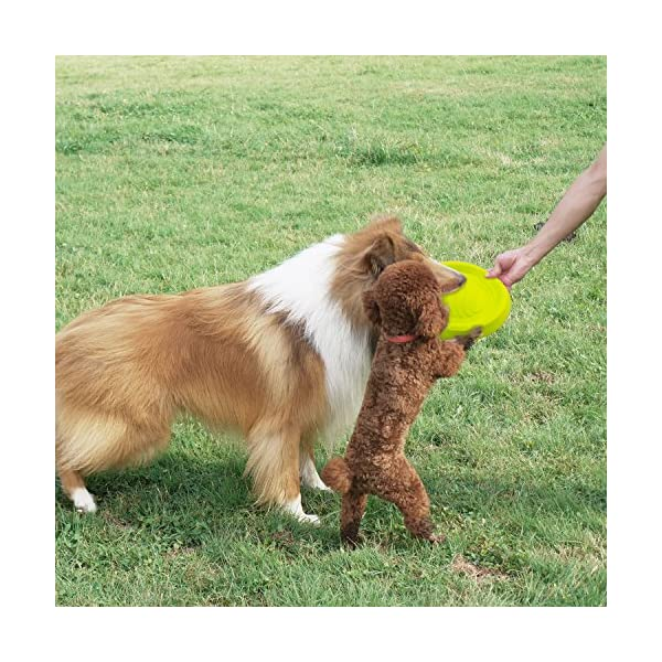 LaRoo Dog Flying Disc Dog Frisbee ABS Material Floatable Dog Toys Pet Frisbee for Puppies, Small, Medium and Large Dogs 8
