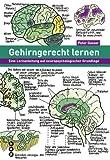 Gehirngerecht lernen: Eine Lernanleitung auf neuropsychologischer Grundlage