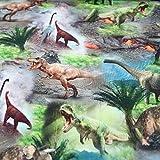 Dinosaurier Stoff Jersey Elastisch Digitaldruck Dinos - 25 cm Einheiten-