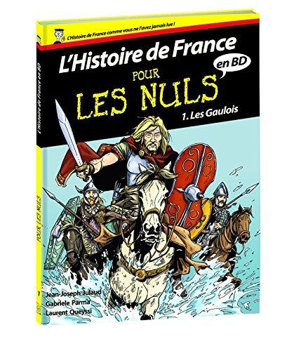 Histoire de France en BD Pour les Nuls - Tome 1 : Les Gaulois (01)