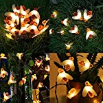 FANSIR Solar String Lights, 8 Modes 30 LED Honey Bee Fairy Lights Solar Powered Waterproof Outdoor String Lights for Garden Patio Yard Summer Party Wedding Indoor Bedroom Decor (Warm White) 12